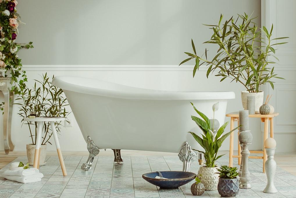 Met deze planten maak je van je badkamer een groene oase